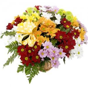 Las flores a domicilio floristerias Zaragoza