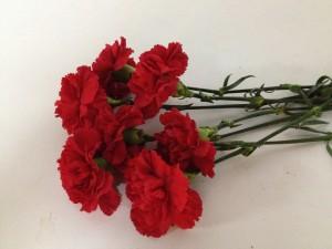 Reserva ya tu ramo para la ofrenda de flores floristerias Zaragoza