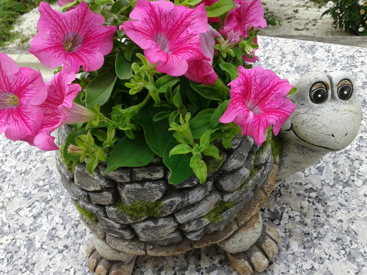 Plantas para decorar el porche de tu casa florister a la for Decoracion de plantas en macetas