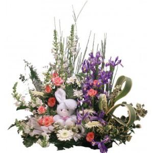 nacimientos 1 floristerias zaragoza
