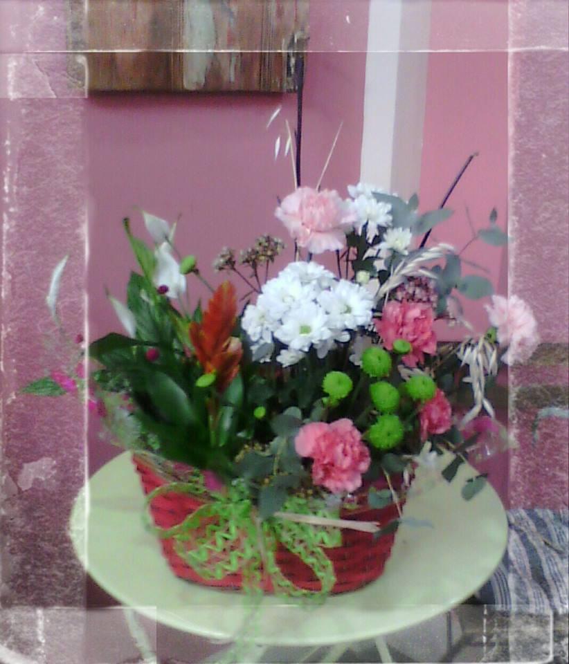 centro flores 2