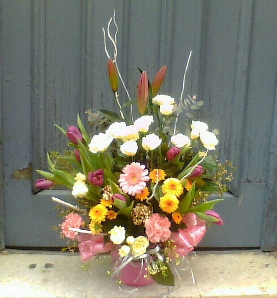 centro flores zaragoza