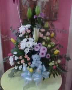 Flores nacimientos floristerias Zaragoza