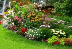 jardines floristerias Zaragoza