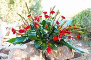 floristeria-zaragoza-la-mazeta-todos-los-santos