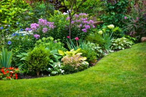 preparar el jardin_para_el_verano1