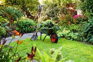 El jardin en primavera floristerias zaragoza
