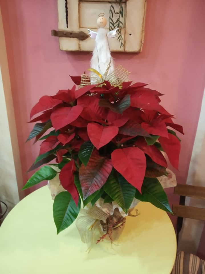 decorar con flores en navidad floristerias zaragoza
