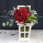 Regala flores preservadas floristerias zaragoza