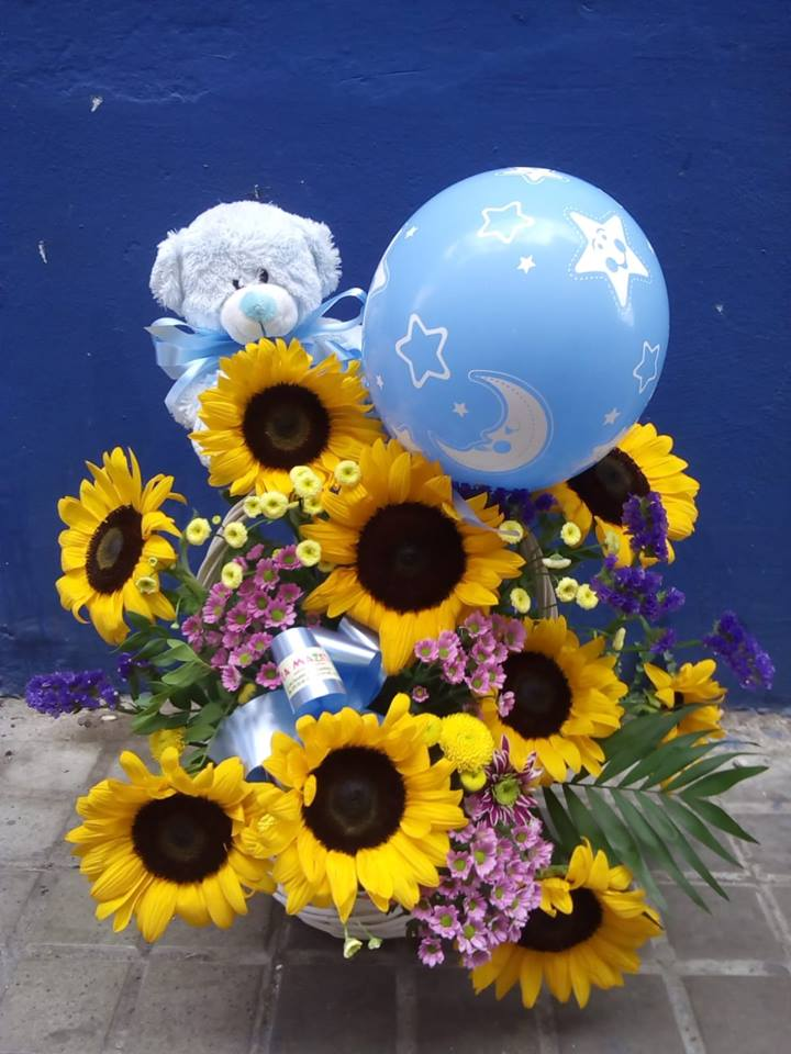 flores para nacimiento floristerias zaragoza