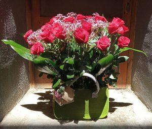Dia de la madre floristerias zaragoza.